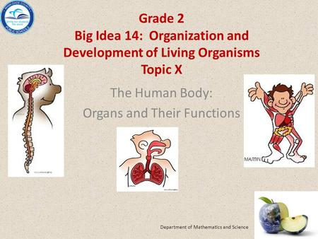 Grade 2 Big Idea 14: Organization and Development of Living Organisms Topic X The Human Body: Organs and Their Functions Department of Mathematics and.