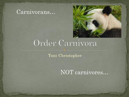 Toni Christopher Carnivorans… NOT carnivores…. Order Carnivora Suborder Feliformia Suborder Pinnipedia Suborder Caniformia.