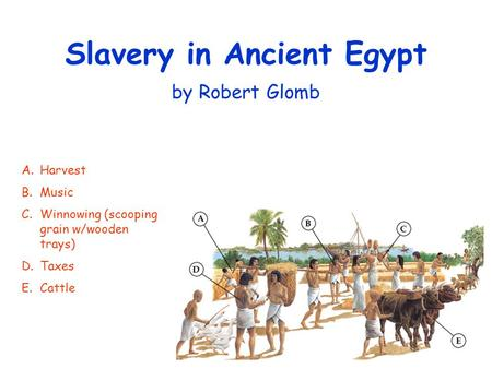 Slavery in Ancient Egypt by Robert Glomb A.Harvest B.Music C.Winnowing (scooping grain w/wooden trays) D.Taxes E.Cattle.