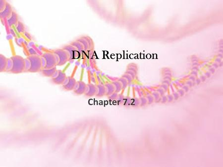 DNA Replication Chapter 7.2. Processing of Genetic Material.