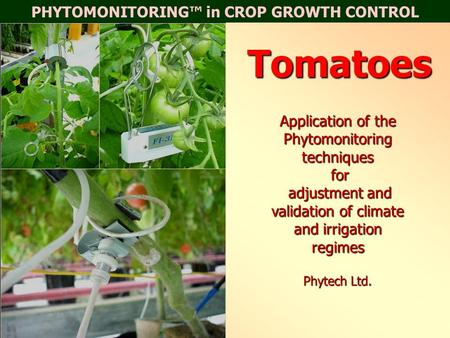 PHYTOMONITORING™ in CROP GROWTH CONTROLTomatoes Application of the Phytomonitoring techniques for adjustment and validation of climate and irrigation regimes.