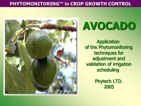 PHYTOMONITORING™ in CROP GROWTH CONTROLAVOCADO Application of the Phytomonitoring techniques for adjustment and validation of irrigation scheduling Phytech.