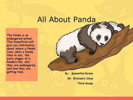 All About Panda By: Samantha Parson Mr. Erickson's Class Third Grade The Panda is an endangered animal. This PowerPoint will give you information about.
