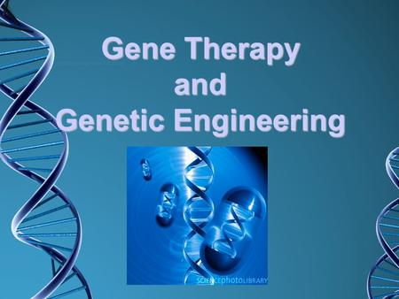 Gene Therapy and Genetic Engineering Your Goals: Create a Concept Map to organize what you know about gene therapy. Use the Learn.Genetics gene therapy.