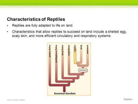 Reptiles Copyright © McGraw-Hill Education Characteristics of Reptiles Reptiles are fully adapted to life on land. Characteristics that allow reptiles.