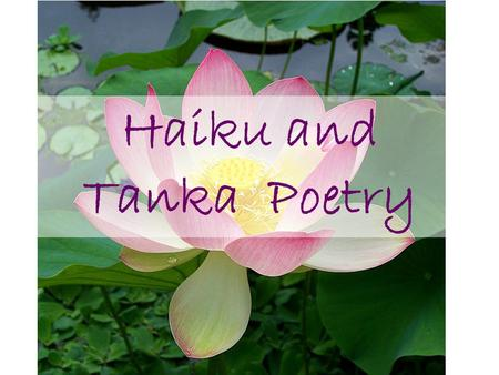 Haiku and Tanka Poetry. What You Will Need 1.Piece of Paper for notes 2. Piece of Paper for answering the quick write & questions 3.Piece of Paper for.