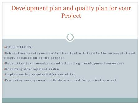 Development plan and quality plan for your Project