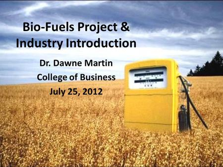 Bio-Fuels Project & Industry Introduction Dr. Dawne Martin College of Business July 25, 2012.