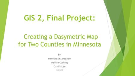 GIS 2, Final Project: Creating a Dasymetric Map for Two Counties in Minnesota By: Hamidreza Zoraghein Melissa Cushing Caitlin Lee Fall 2013.