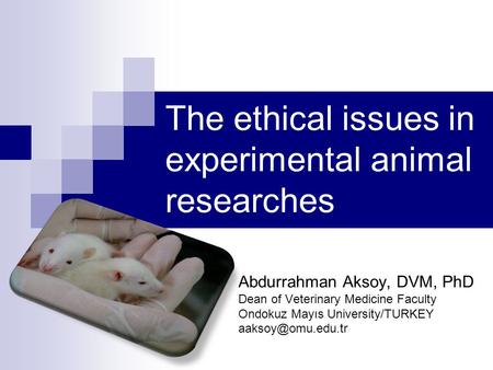 the ethical issues surrounding animal exploitation The issues - petaorguk.