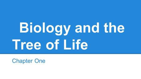 Biology and the Tree of Life Chapter One. Key Concepts Organisms obtain and use energy are made up of cells, process information, replicate, and as populations.