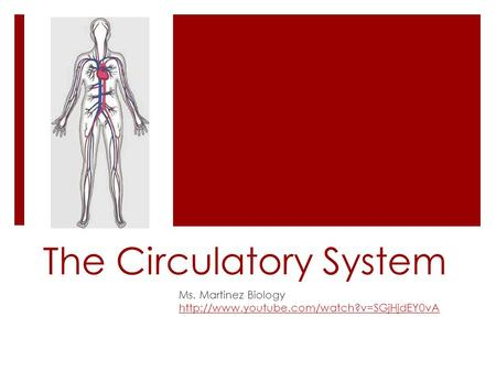 The Circulatory System Ms. Martinez Biology