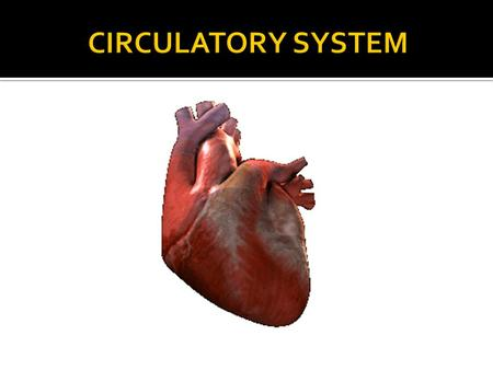  Label a diagram of the heart and blood vessels.  Explain how the blood circulates through the heart to the body.  Identify two common disorders of.