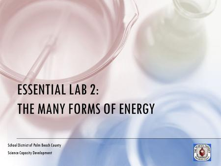 ESSENTIAL LAB 2: THE MANY FORMS OF ENERGY School District of Palm Beach County Science Capacity Development.