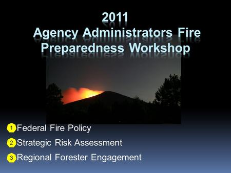 1. Federal Fire Policy 2. Strategic Risk Assessment 3. Regional Forester Engagement 1 2 3.