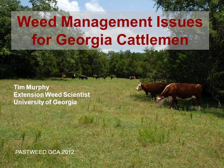 1 Tim Murphy Extension Weed Scientist University of Georgia Weed Management Issues for Georgia Cattlemen PASTWEED.GCA.2012.