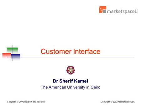 Copyright © 2002 Marketspace LLC Copyright © 2002 Rayport and Jaworski Customer Interface Dr Sherif Kamel The American University in Cairo.
