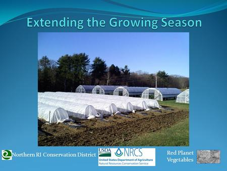 Northern RI Conservation District Red Planet Vegetables.