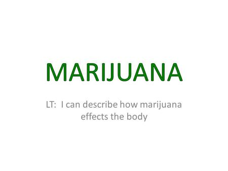 LT: I can describe how marijuana effects the body.