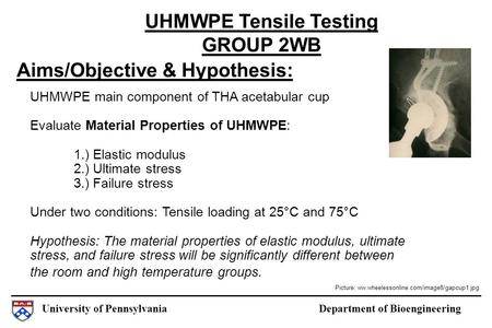 University of Pennsylvania Department of Bioengineering Aims/Objective & Hypothesis: UHMWPE Tensile Testing GROUP 2WB UHMWPE main component of THA acetabular.
