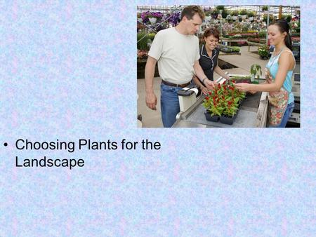 Choosing Plants for the Landscape. Next Generation Science / Common Core Standards Addressed! CCSS. Math. Content.HSN ‐ Q.A.1 Use units as a way to understand.