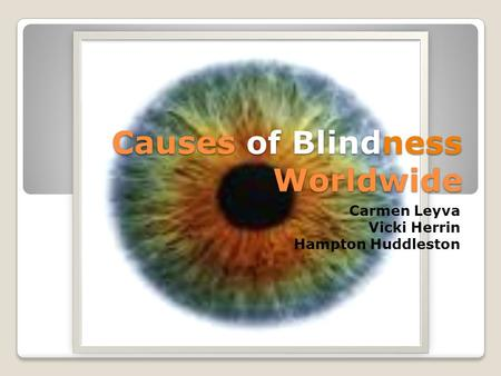 Causes of Blindness Worldwide Carmen Leyva Vicki Herrin Hampton Huddleston.