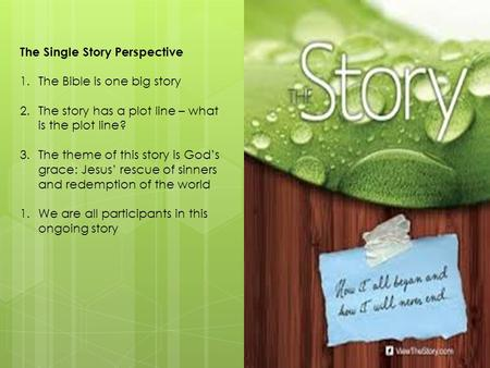 The Single Story Perspective 1.The Bible is one big story 2.The story has a plot line – what is the plot line? 3.The theme of this story is God's grace:
