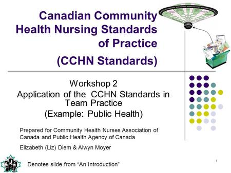 Workshop 2 Application of the  CCHN Standards in Team Practice