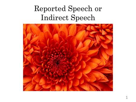 "Reported Speech or Indirect Speech 1. WHAT`S WHAT ? "" I have no time for going to lunch."" Ben says, "" I have no time for going to lunch."" reporting sentencedirect."