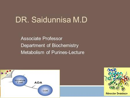 DR. Saidunnisa M.D Associate Professor Department of Biochemistry Metabolism of Purines-Lecture.