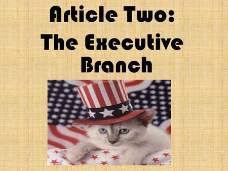 Article Two: The Executive Branch. The executive Branch is headed by the President of the United States. Can you name them?