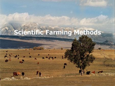 Scientific Farming Methods. Why do the farmers use scientific farming methods? To increase the productivity To solve the farming problems.