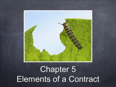 Chapter 5 Elements of a Contract