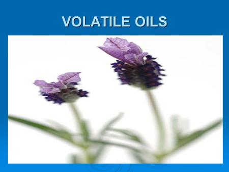 VOLATILE OILS. All official volatile oils are of vegetable origin. Normally pre-exist in the plant – stored in a special secretory tissue (e.g. Citrus.