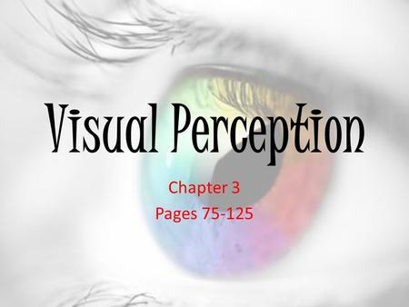 Visual Perception Chapter 3 Pages 75-125.