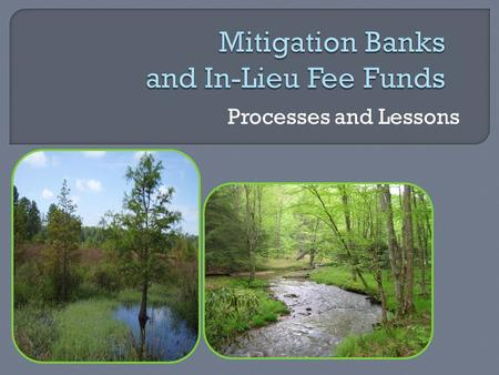 Processes and Lessons.  Provide compensation for stream or wetland impacts permitted under the Virginia Water Protection Permit Program (VWPP)  Credits.