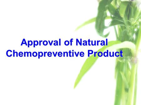 Approval of Natural Chemopreventive Product. Scope of The Study Preclinical evaluation (In vivo)Preclinical evaluation (In vivo) –Toxicity testing  Acute.