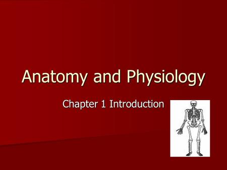 Anatomy and Physiology Chapter 1 Introduction. Anatomy and Physiology Anatomy: the study of the structure of the body Anatomy: the study of the structure.