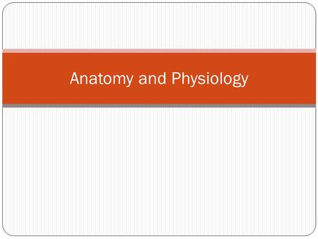 Anatomy and Physiology. Turn to a neighbor and talk about: What you think you will learn about in this class The definition of anatomy The definition.
