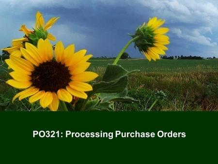1 PO321: Processing Purchase Orders. 22 Training Agenda  Welcome  Icebreaker  Lesson One – Understanding Purchase Orders  Lesson Two – Process Purchase.
