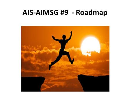 AIS-AIMSG #9 - Roadmap. 2 *Participants as experts not as organisation's representative AIS-AIM Study Group Active since end 2008 Objectives Global strategy/roadmap.