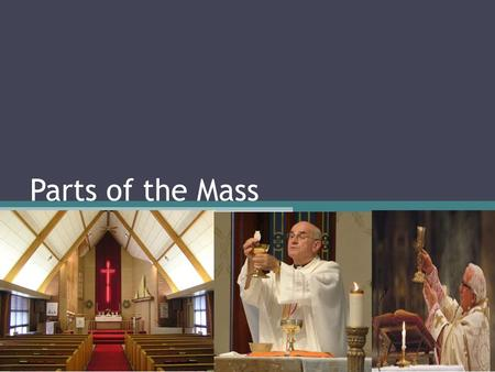 Parts of the Mass.
