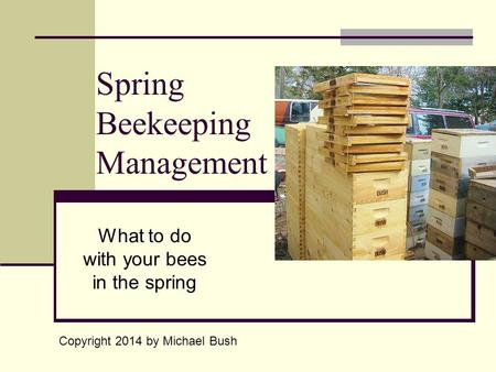 Spring Beekeeping Management What to do with your bees in the spring Copyright 2014 by Michael Bush.