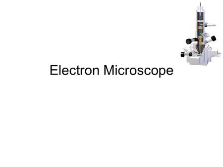 Electron Microscope. Light vs EM Which is which? What are the main differences?