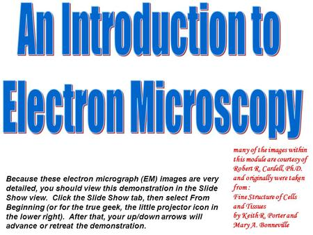Because these electron micrograph (EM) images are very detailed, you should view this demonstration in the Slide Show view. Click the Slide Show tab, then.