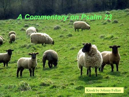 A Commentary on Psalm 23 Kiosk by Johnny Felker. The Lord is my Shepherd.. THAT'S RELATIONSHIP!