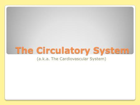 The Circulatory System (a.k.a. The Cardiovascular System)