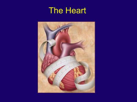 The Heart. Functions of the Heart The heart works in conjunction with cardiovascular centers and peripheral blood vessels to achieve this goal The function.