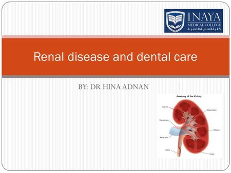 BY: DR HINA ADNAN Renal disease and dental care. RENAL DISEASE People whose kidneys do not function properly occasionally receive dialysis, a process.
