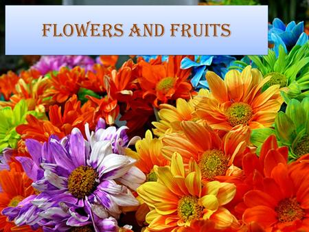 Flowers and Fruits.